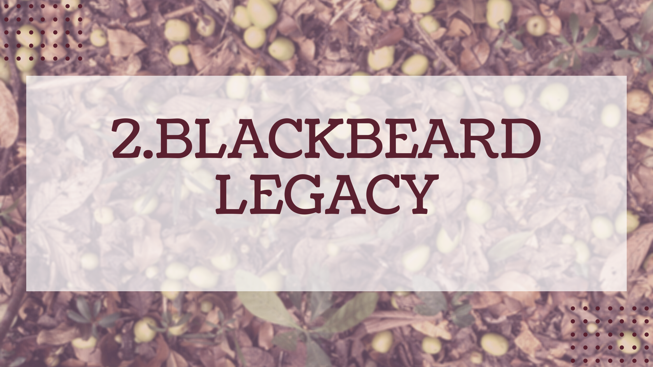 2.Blackbeard Legacy